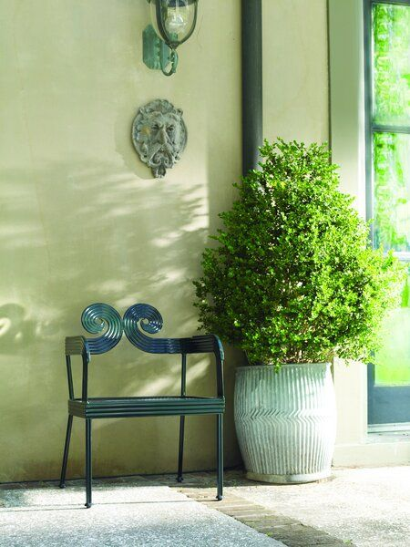 <img src=&quot;metal chair and a garden pot.jpg&quot; alt=&quot;green metal chair beside a shrub in a huge planter.&quot;>